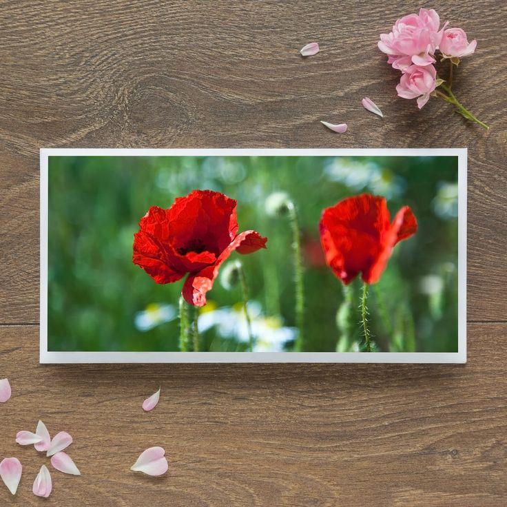 Single Blank Card by landscape photographer Nina K Claridge - Wild Poppies