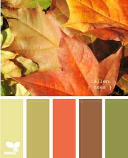 This is basically the color scheme of my living room, and much of my house. Sage green, lime green, orange, brown, red, with dark woods, silver-metallic and white ceramic accents. | followpics.co