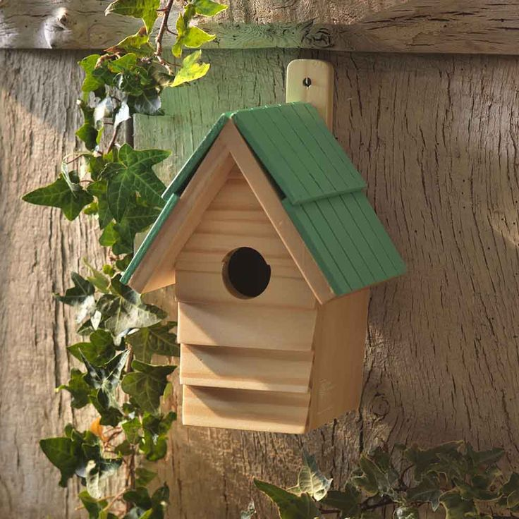 Bird Box – MeldHome