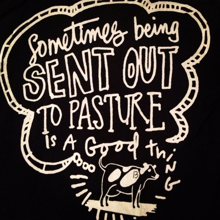 One of my favorite parts about working at Chipotle are the incredibly hilarious and awesome t-shirts that we get to wear!!