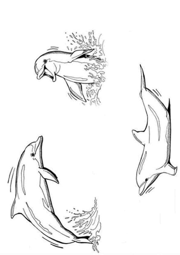 Coloriage pour enfant, un dessin de 3 dauphins très joyeux