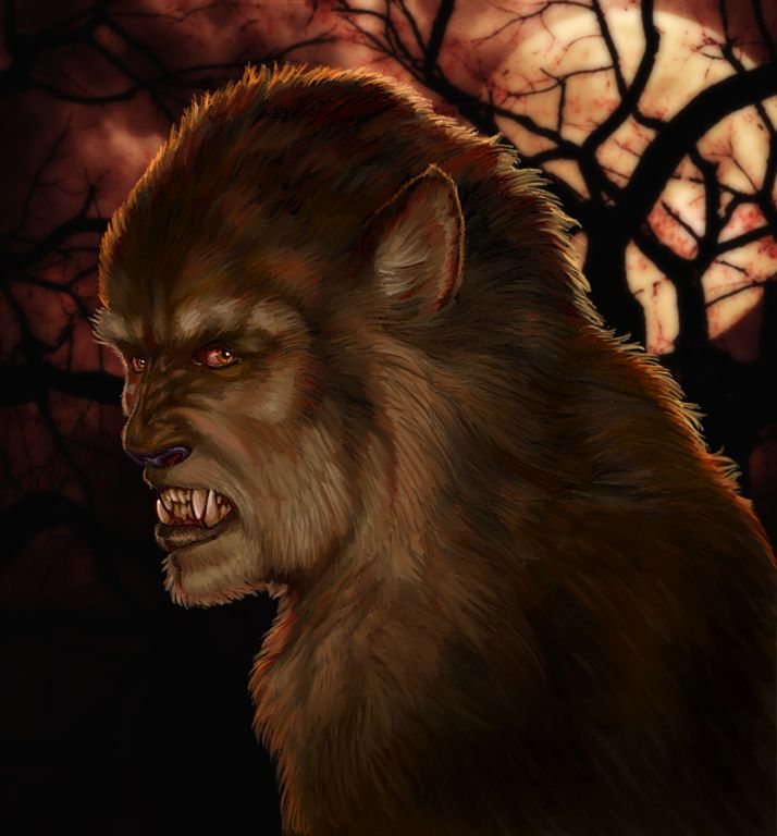 Werewolves Shifters: 17 Best Images About **Werewolf** On Pinterest