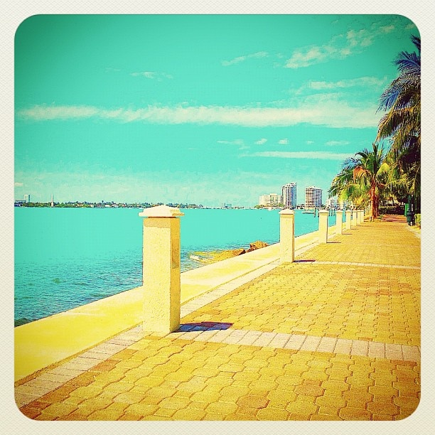 MIAMI SOUTH BEACH ☀ port side - @balazsroth- #webstagram