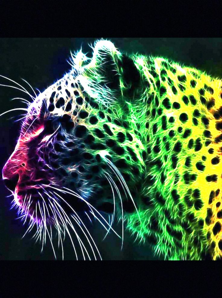 13 Best Ideas For Delilah S Rainbow Leopard Room Images On