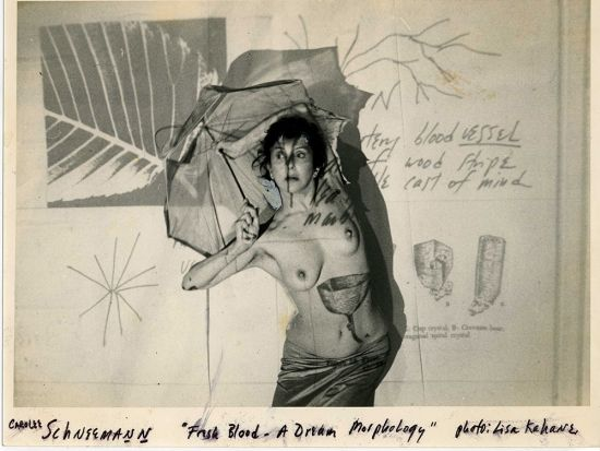 Exhibitions - Carolee Schneemann - Art in America