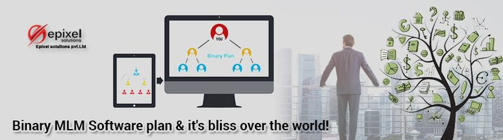 Binary MLM Plan and how is it accepted in the world of marketing and then, the ability of Binary MLM Software to maintain it.