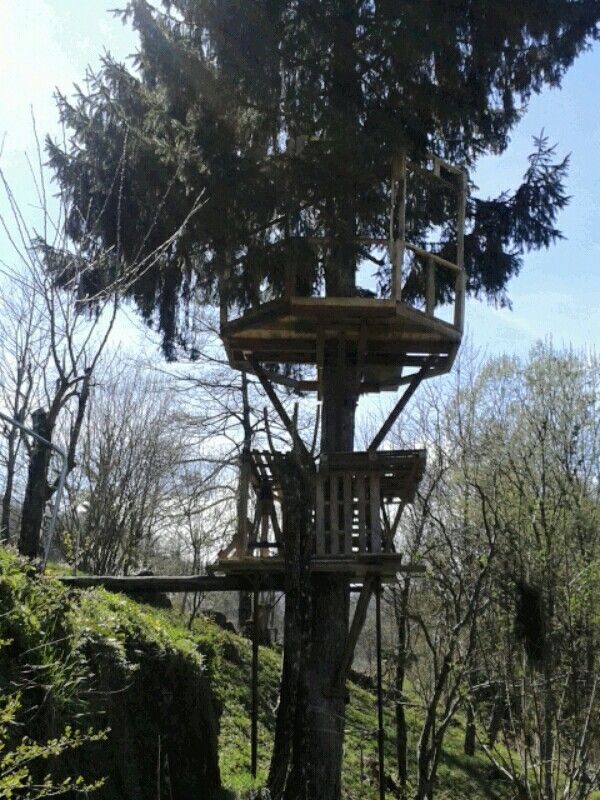 Building treehouse