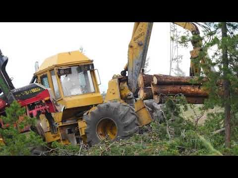 Salvage Logging | Exploring the Nature of Wyoming | Tractors