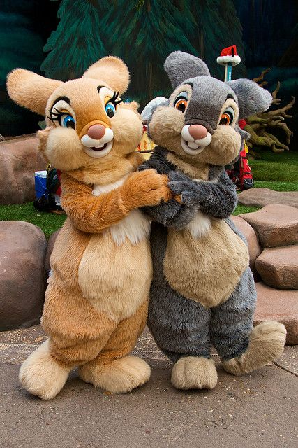 #Thumper and #MissBunny at #WaltDisneyWorld   I LOVE ...