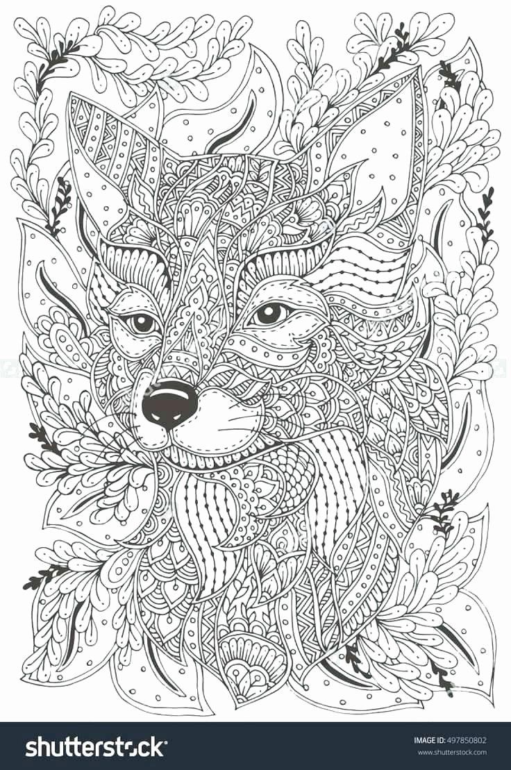Coloring Animals Fox Lovely Coloring Pages Candy Bar – Superpage