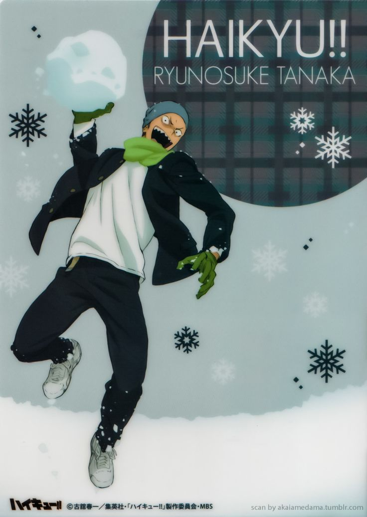 Haikyuu!! Mini Clear Files Winter Edition :31 - 5 | 6 - 9