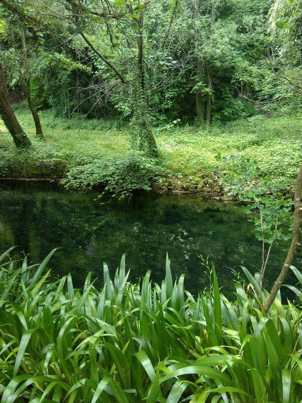 Green natura sorgente gorgazzo
