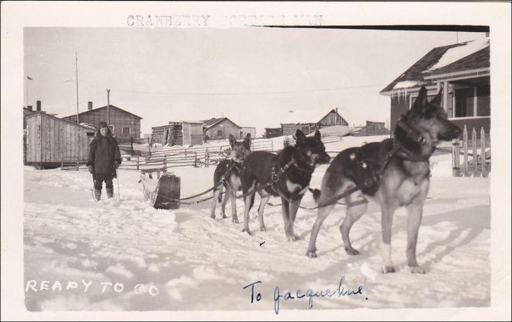 RP: Dog Team , Cranberry Portage , Manitoba , Canada , 1930-40s