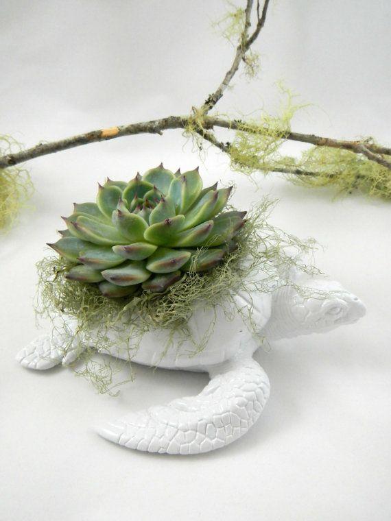 Bright White Sea Turtle Planter   Modern Art Centerpiece On Etsy, $35.00