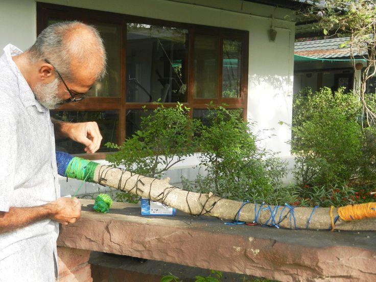 Tree Tapestry by Jitesh Malik and Anu Sabhlok