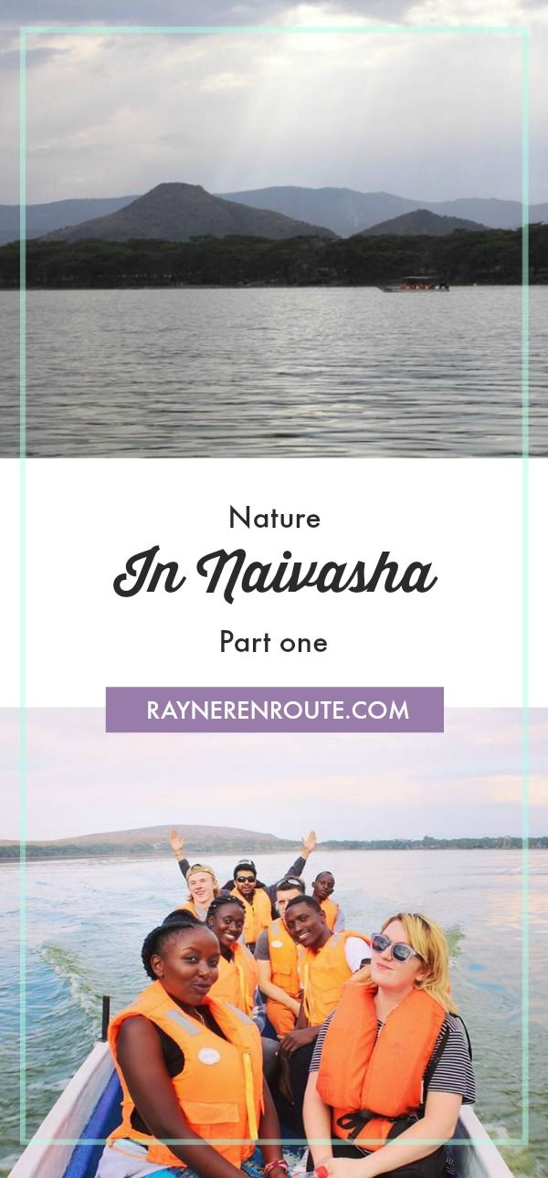 Naivasha is home to some stunning wildlife and natural environments. Here is part one of my Nature in Naivasha travel guide answering the important question, when in Naivasha where should you stay?