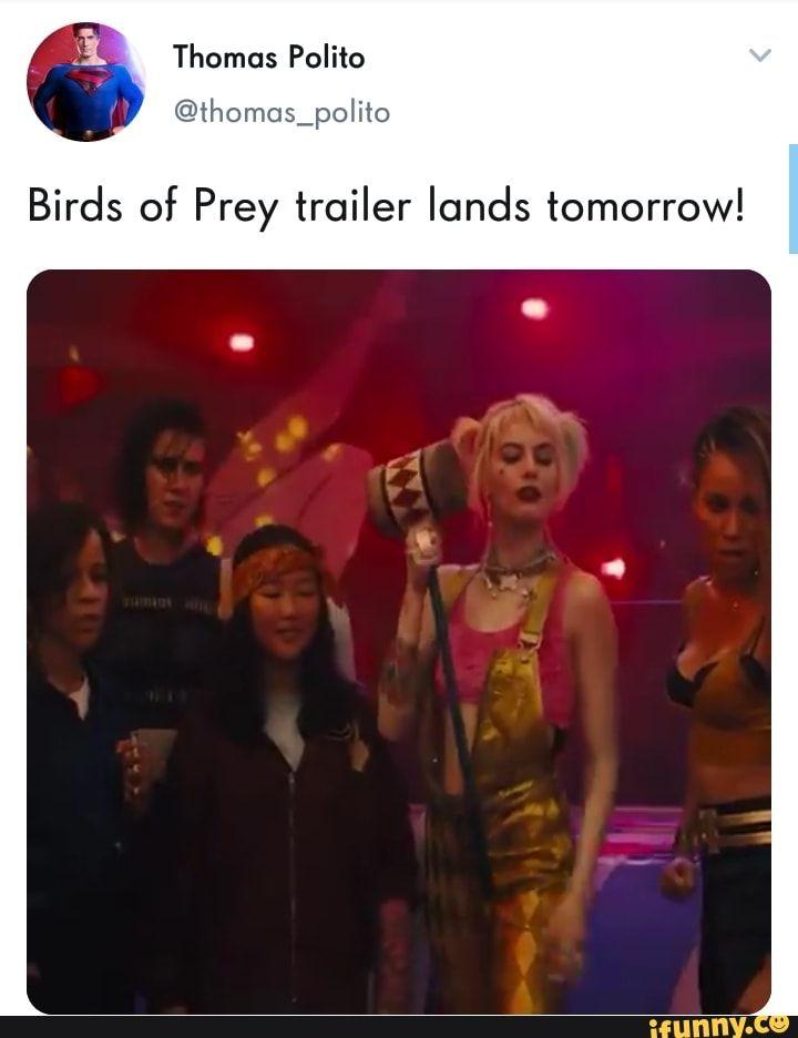 Birds Of Prey Trailer Lands Tomorrow Ifunny Birds Of Prey Prey Memes