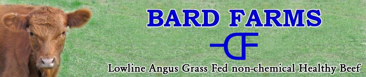 Bard Farms - Lowline Angus Grass Fed non-chemical Healthy Beef, LowLine Angus Cattle, Robert & Judy Bard.