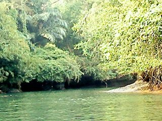 Green Canyon River. Indonesia