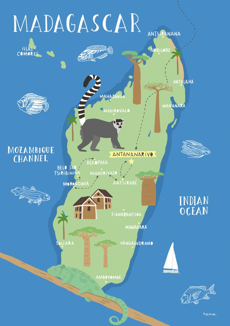 An illustrated Map of Madagascar, place of lemurs, baobabs, chamaleons and…