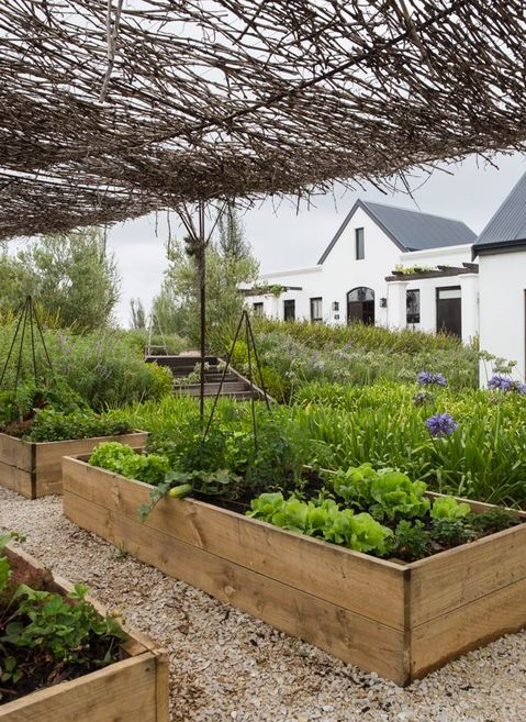 """Newstead Wines - """"Wine tasting in Plett's chicest vineyard""""  Garden Route South Africa #PlettWinelands  #Plettisafeeling  Farm to Fork.  Made from Scratch. Grown & plated."""