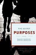 The Secret Purposes by David Baddiel Review at: http://cdnbookworm.blogspot.ca/2014/05/the-secret-purposes.html