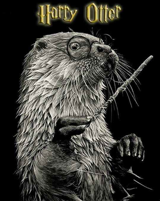 Harry Otter… For some reason the Redwall books come to mind...