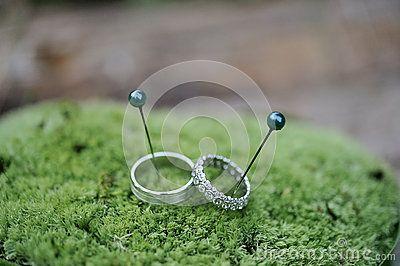 Wedding rings on green moss