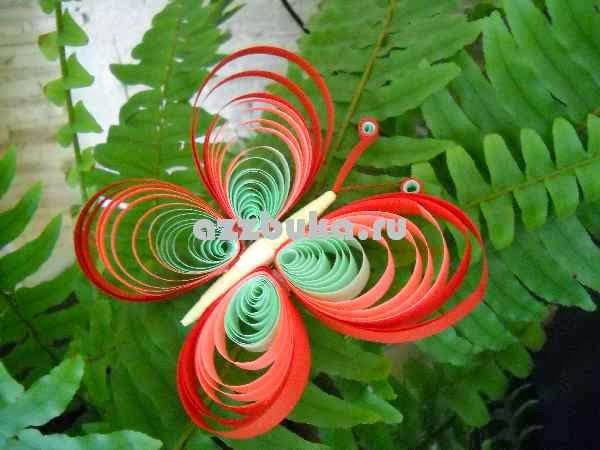 Detailed master class quilling butterfly