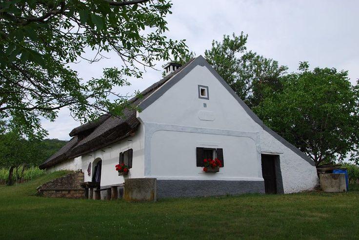 Parasztházak - Les-hegyi nádfedeles pince-ház - Balatonakali - Dunántúl- Hungary fotó Lovay Gyula