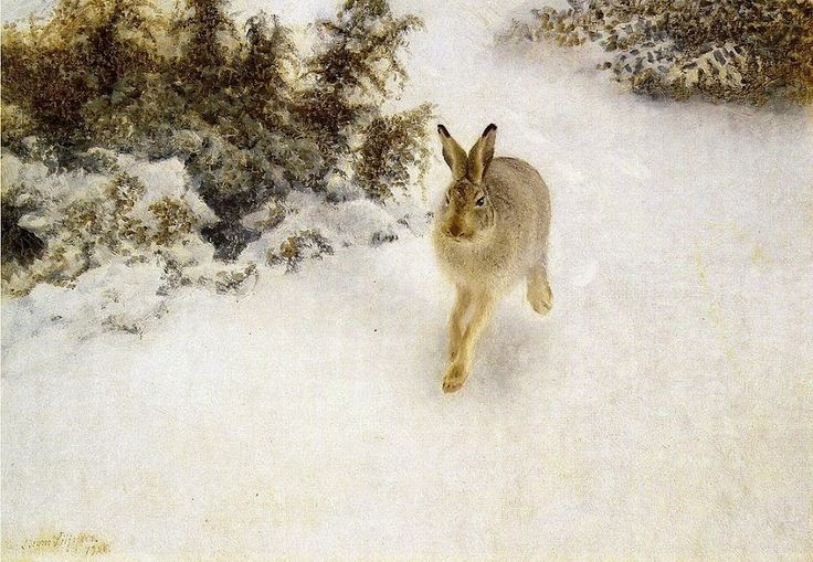 Bruno Liljefors - Winter Hare