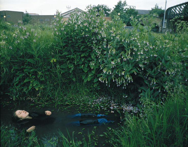 """Tom Hunter Appropriation of """"The Lady Of Shalott"""""""