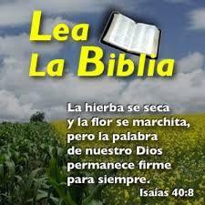 Resultado de imagen para frases de versiculos dela biblia