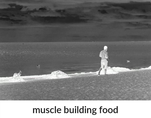 muscle building food_168_20190131062351_51 #muscle building