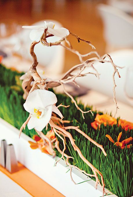 Best orange and green flower centerpieces images on