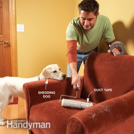 33 best images about best vacuum for pet hair   thoughts