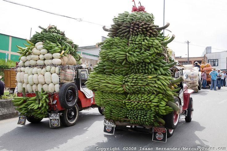¡Viva el Yipao! The Yipao parade....culture of the Colombian coffee region.