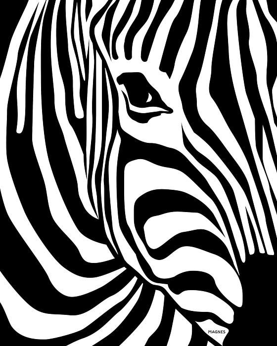 Zebra Print by Ron Magnes