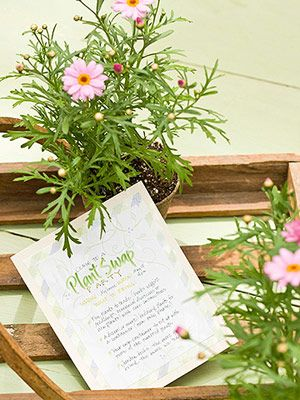 Steps for how-to host a Plant Swap Party.  These are lots of fun and it's a great way to share your cuttings.