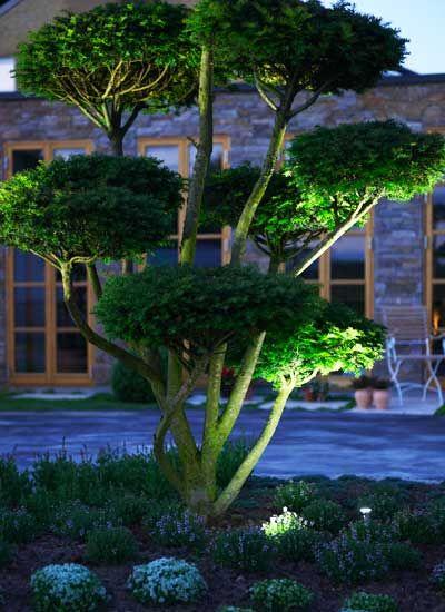 HVEM ER HADDELAND DESIGN? Fordi du ønsker en helt spesiell hage, - er vi et helt spesielt hagearkitektfirma. Haddeland Design har spesialisert seg i eksklusivt design til private hager. Våres kjennemerke er at vi lager vakre hager i tidens enkle formspråk: rene linjer, minimalistisk stil og høy kvalitets løsninger. Vi er et av få firmaer som utelukkende henvender oss til liebhagemarkedet.