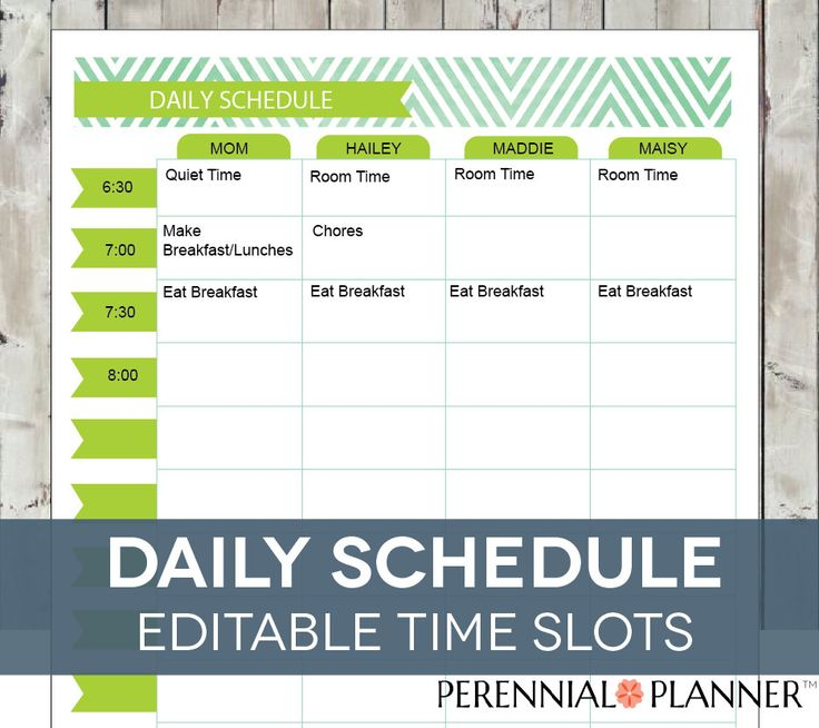 daily schedule hourly printable editable  planner for moms  homeschool planner