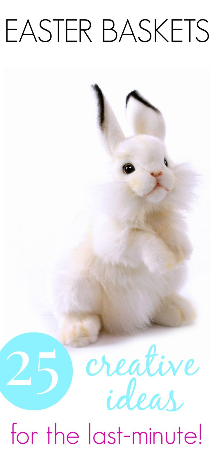 Best 25 creative easter basket ideas ideas on pinterest easter 25 creative easter basket ideas kids will love negle Image collections