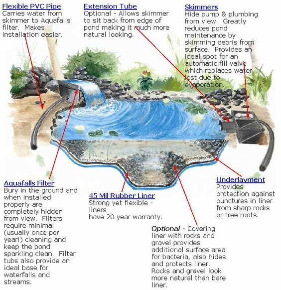 17 best ideas about pond construction on pinterest for Garden pond design and construction