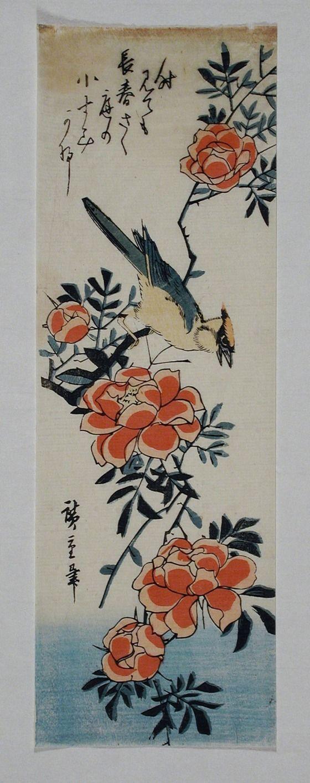 Cedar Waxwing and Camellia Series: Birds and Flowers Utagawa Hiroshige (Japan, Edo, 1797-1858) Japan, mid-19th century Prints; woodcuts Color woodblock print Image: 13 1/16 x 4 3/8 in. (33.3 x 11.2 cm); Sheet: 13 1/16 x 4 3/8 in. (33.3 x 11.2 cm) Gift of Dr. Harvey Eagleson (M.66.35.39) Japanese Art