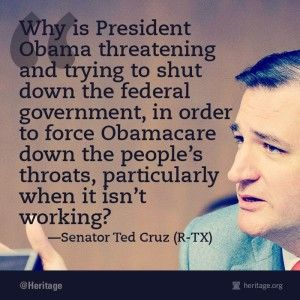 Ted Cruz: Republicans in Washington are Scared...Calls on The People to Help Defeat Obamacare. (ObamaCare gives him ANOTHER HOLD over the American people. HIs DEATH PANEL will DECIDE if very ill or 65 & older get more tests and procedures. WHO IS PUSHING GRANNY OVER THE CLIFF NOW?)