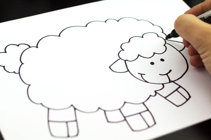 How to draw a sheep - photo#14