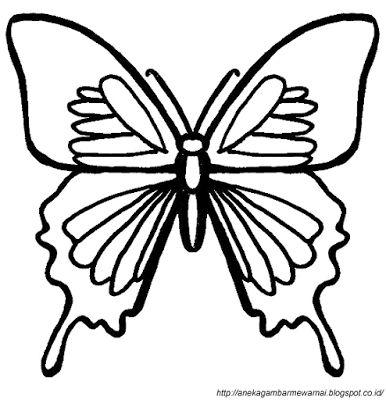 Aneka Gambar Mewarnai - Gambar Mewarnai Kupu-kupu Untuk Anak PAUD dan TK.   Pelajaran menggambar dan...