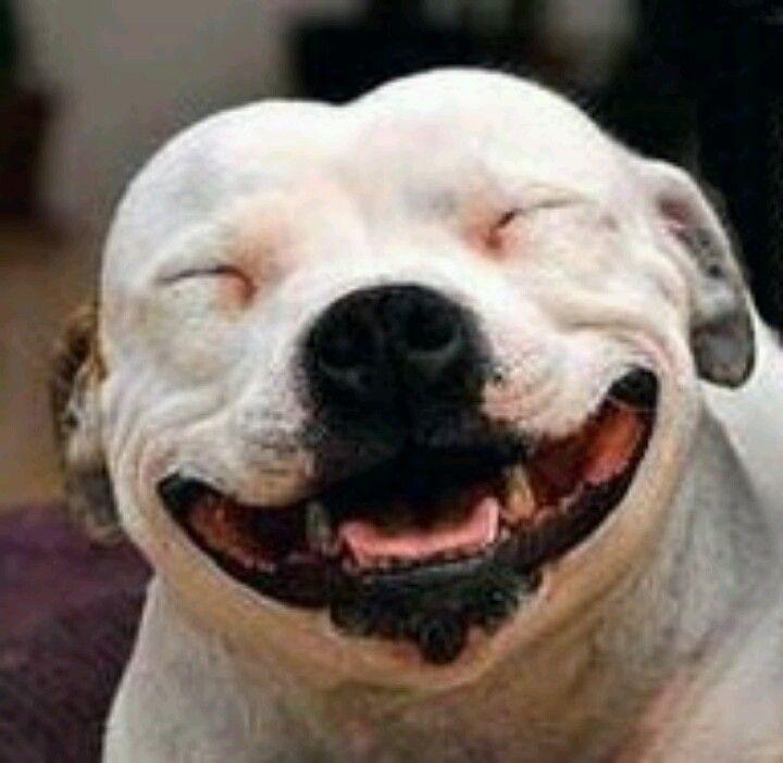 He's so happy
