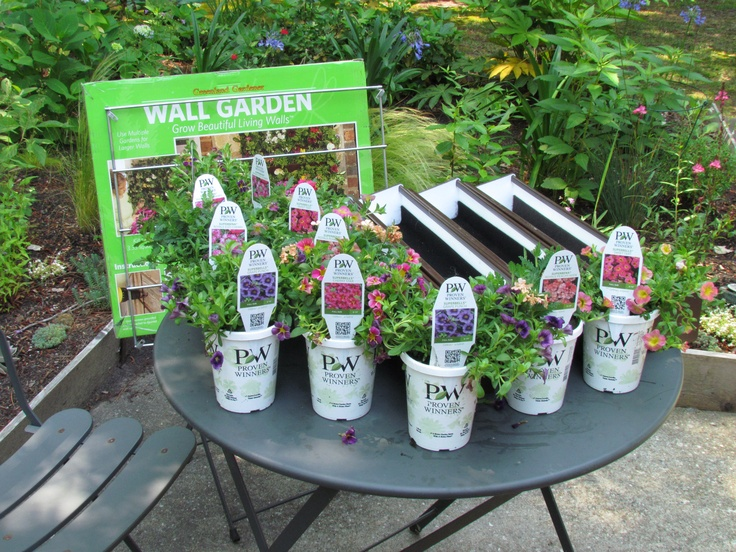 Set Out Your Plants.