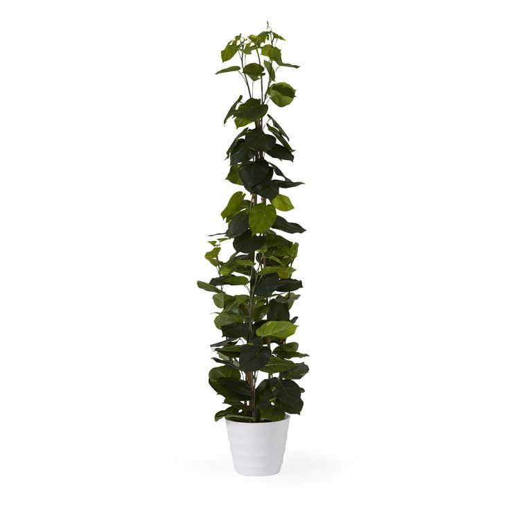 les 25 meilleures id es de la cat gorie plantes artificielles sur pinterest jardins verticaux. Black Bedroom Furniture Sets. Home Design Ideas